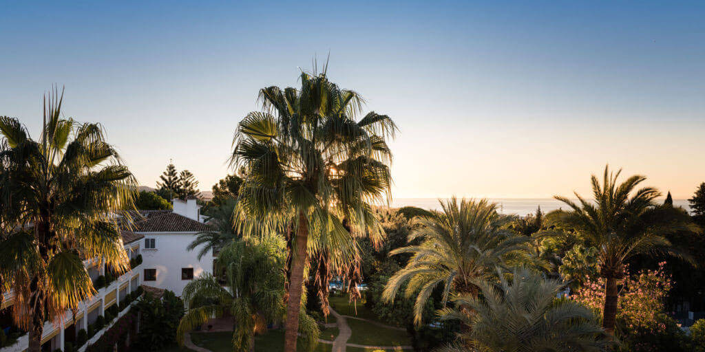 Buchinger Wilhelmi, Fasten, Heilfasten, Fasting, Health, Integrative Medicine, Marbella, Andalusia, Palme, Palm, Sea, Ocean, Meer, View,