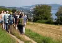 Wandern bei Buchinger Wilhelmi
